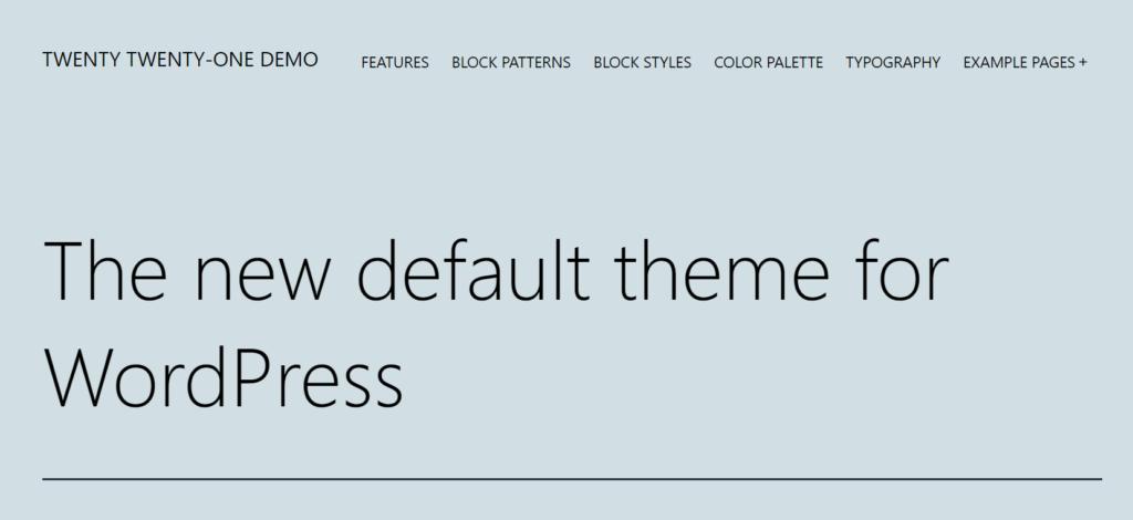 WordPress Default Theme Twenty Twenty One